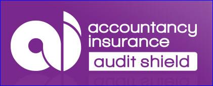 audit_insurance